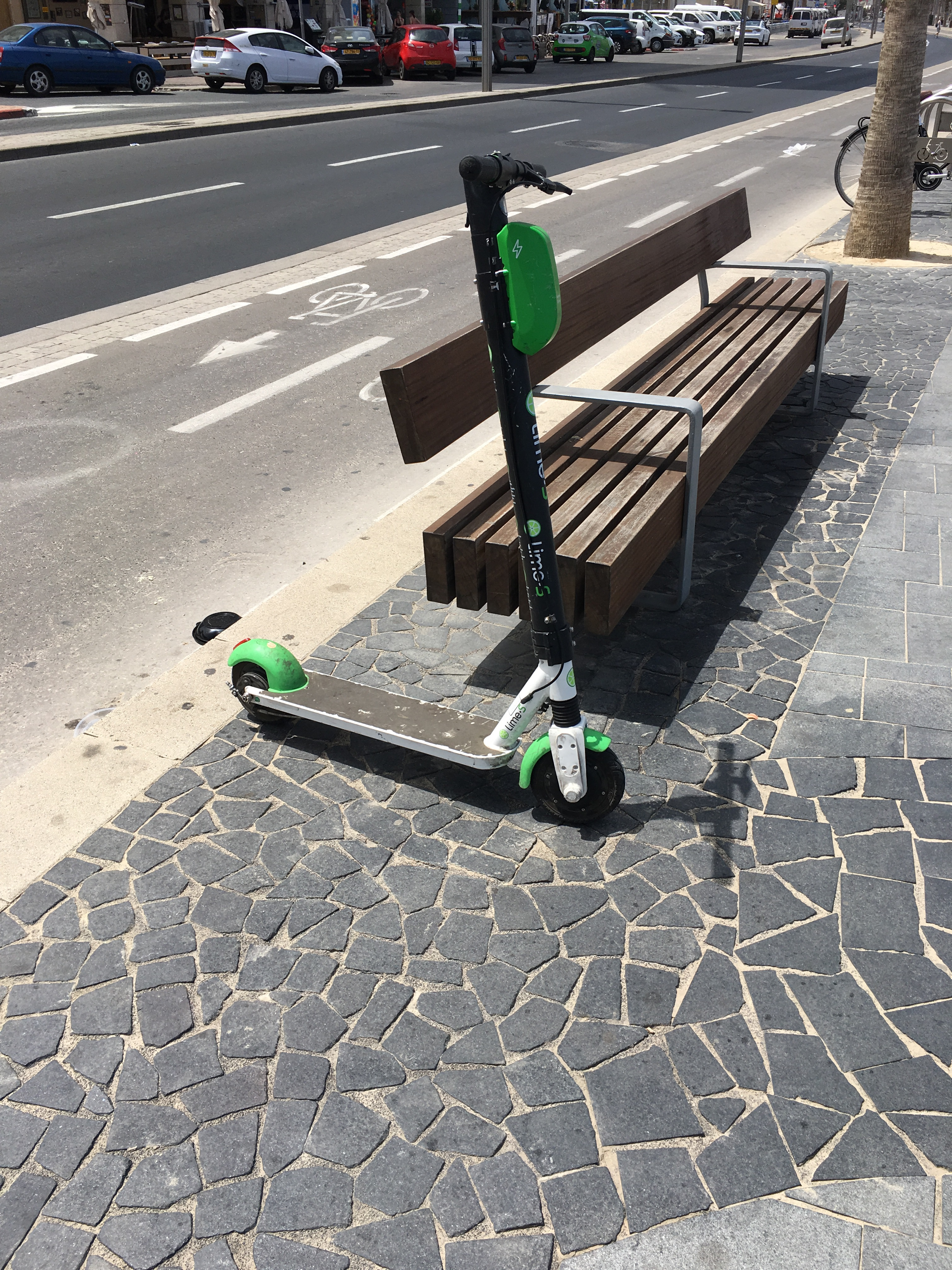 Rental electric scooter. Tel Aviv. Brownell 2019