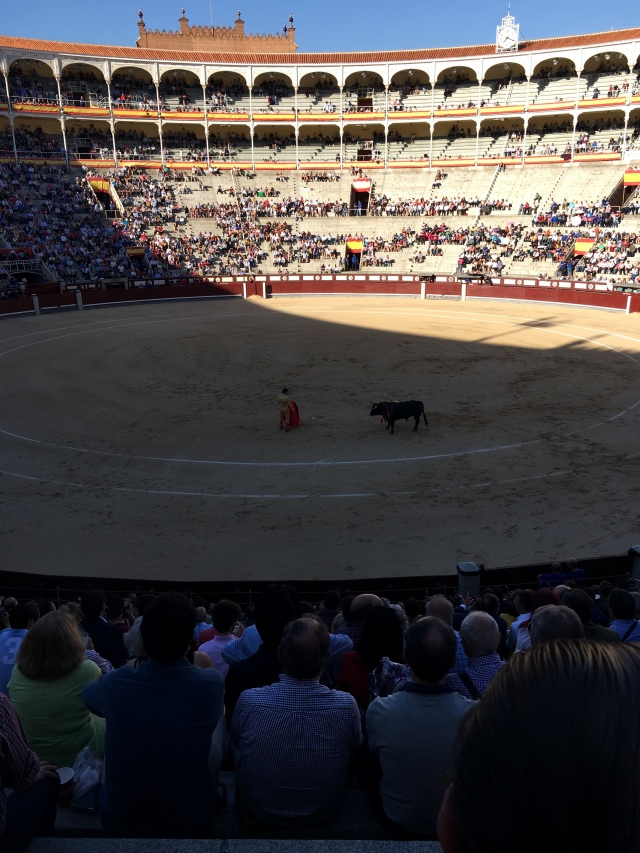 Madrid bullfights. Brownell. May, 2019