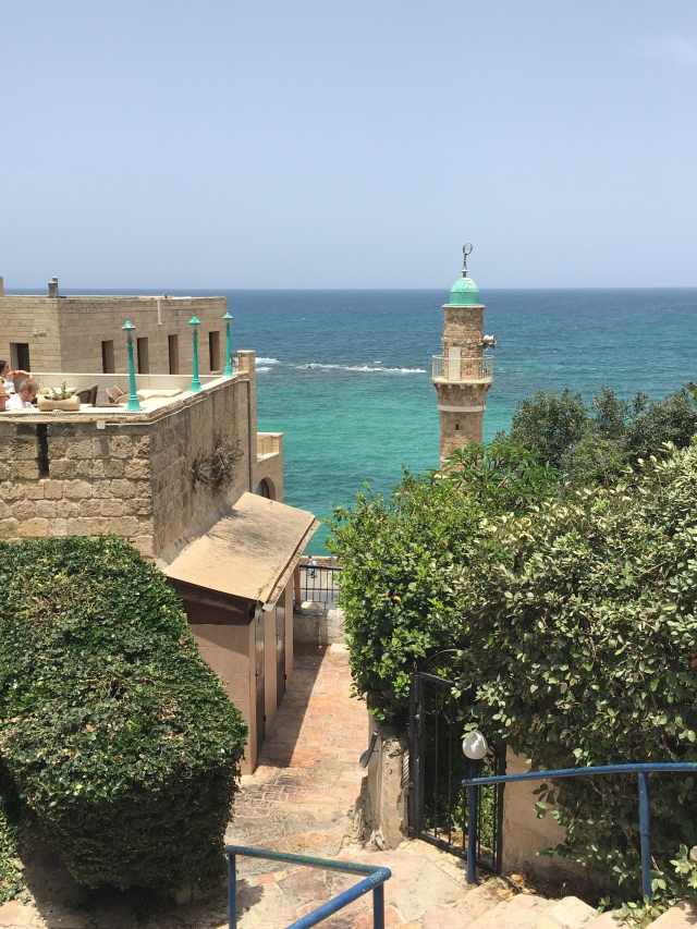Jaffa Port, Brownell, 2019